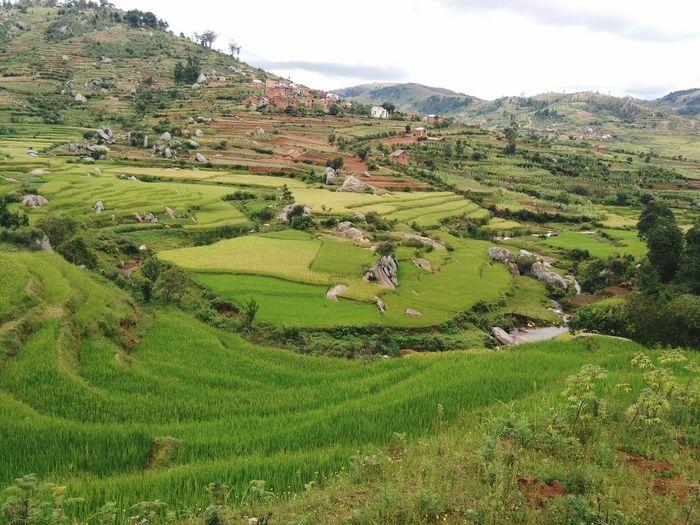 Village Ivony