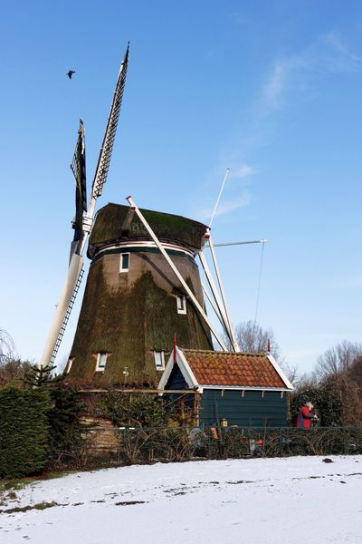 It's About That Time  for yet Another Windmill Shot in Color or Colour .. One Little Bird and the Caretaker are included.