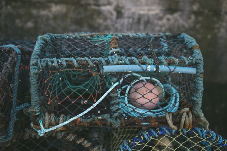 Close-up of fishing net in basket