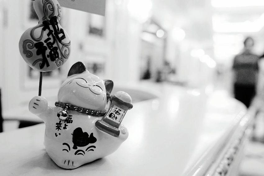 輕骨頭,癡噠噠😹😹Focus On Foreground Connection Street City Hanging Control City Street Modern City Life Symbol City Street Shanghai Street Photography First Eyeem Photo Black And White City Life Lucky Cat