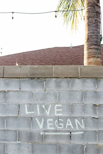 A pro-vegan