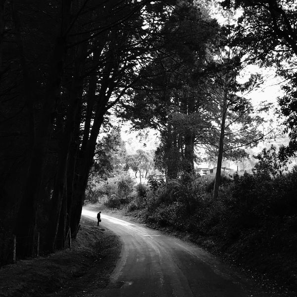 The Street Photographer - 2017 EyeEm Awards Blackandwhite costarica Tree One Person Forest Sommergefühle Sommergefühle