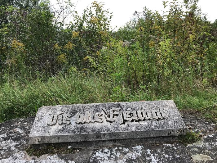 Döllersheim Stone Text Western Script Day Communication No People Outdoors Grass Growth Green Color Welcome Sign Plant Tree Nature