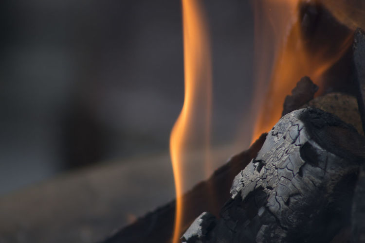 Fire Ash Burning Burnt Close-up Day Environment Fire Fire - Natural Phenomenon Flame Focus On Foreground Glowing Heat - Temperature Motion Nature No People Orange Color Selective Focus Smoke - Physical Structure Wood Wood - Material EyeEmNewHere