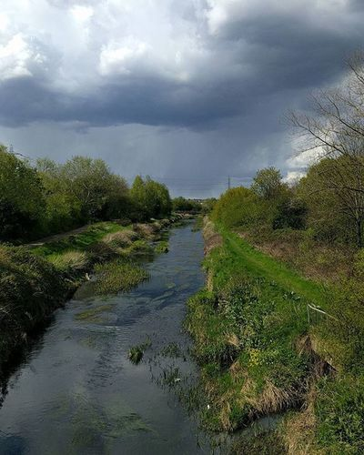 There is a certain beauty to the Roding Eastlondon Ig4 Redbridge River Roding Tributary Thames London Park Parklife Pastoral Nofilter Androidonly