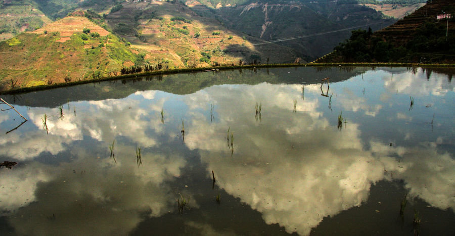 Beauty In Nature China Clouds Day Lake Mountain Nature No People Outdoors Reflection Reflection Reflections Rice Field Rice Paddy Rice Terraces Scenics Sky Tree Water Yuanyang Yuanyang Terraced Fields Yunnan Perspectives On Nature