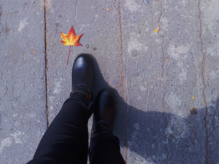 Low Section Of Man Standing By Maple Leaf On Footpath