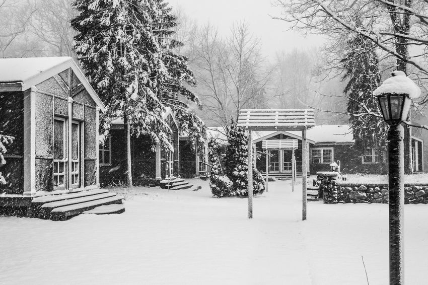 Blizzard at Firefly Architecture Architecture Black And White Photography Blizzard 2016 Building Exterior Built Structure Cabins  Cold Temperature Day Daytime Landscape_photography Michigan Natue Nature No People Outdoors Scenic Snow Snow ❄ Tree Trees Weather Winter