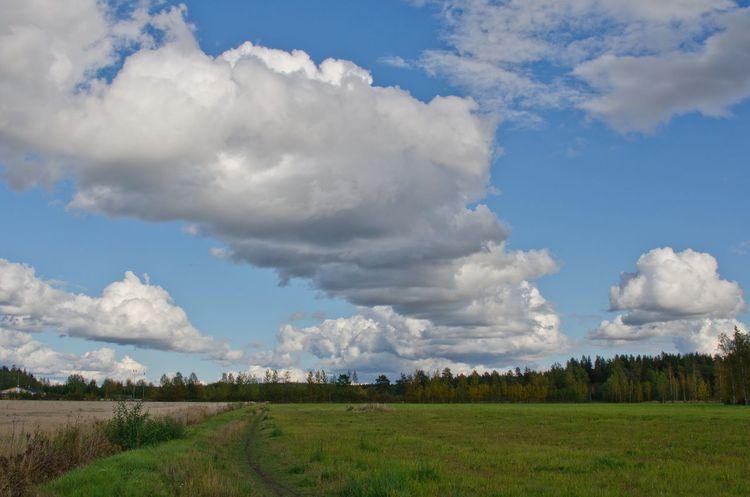 Cloudy autumn landscape Autumn Cloudy Day Cloudy Skies Cloudy Sky Fields Finland Forest Green Järvenpää Landscape Nature Path Scandinavia
