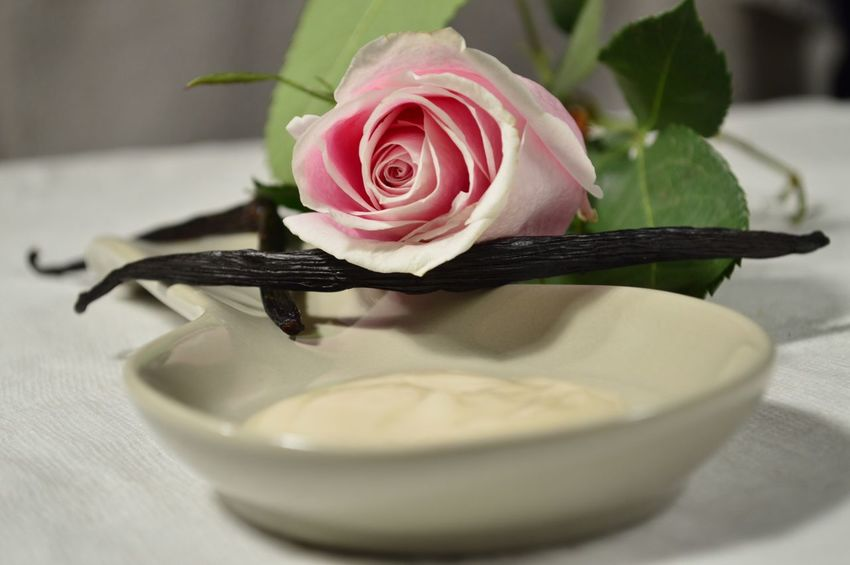 Lotion with Rose and vanilla bean Flower Petal Rose - Flower Fragility Flower Head Freshness Nature Beauty In Nature Close-up Indoors  No People Day Pink Rose Scented Lotion Lotion Hand Cream Vanilla Vanilla Bean Beans Herbal Tranquil