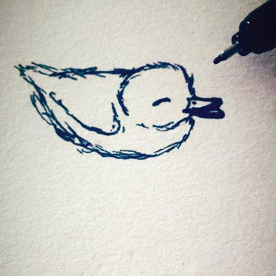 Happy little duck 🐤 Quick little sketch to start the day 💙 Duck Arts_help Sketchbook Sketch_daily Artofdrawingg Art Blackandwhite Sharpie Happy Cute Drawing Birds Swimming Bekind Wip Creative Creative_animalart Quicksketch Doodle Wdfeatures Powermyart Followme Followforfollow Duckling Contrast quack tattooart ink lineart
