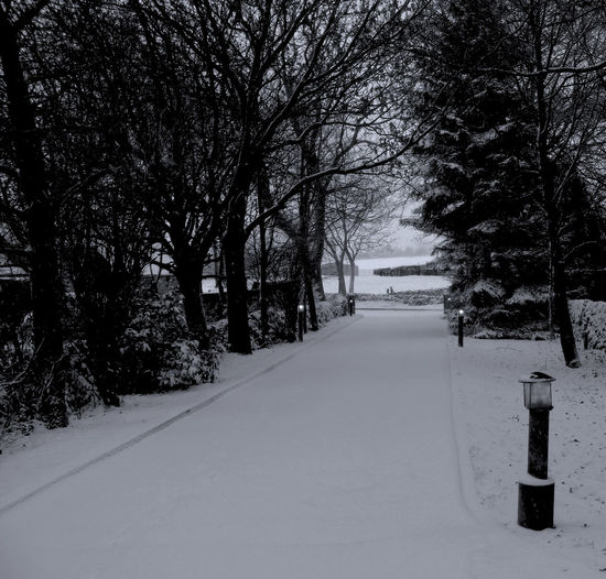 An enticing snow scene in the Derbyshire Winter Arching Trees Bare Tree Black And White Composition Covered Distant Fields Empty Places Frozen Frozen Hidden Route Monochrome Outdoors Path Perspective Season  Settled Snow Snow Covered The Way Forward Tree Virgin Snow Weather White Winter Wrap Up Warm