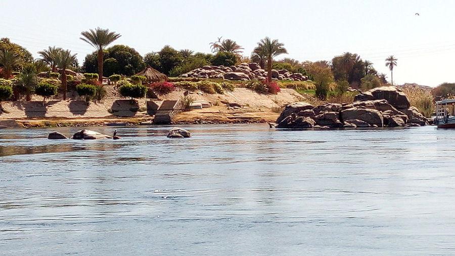 Aswan, Egypt Nice Trip In Nile First Eyeem Photo