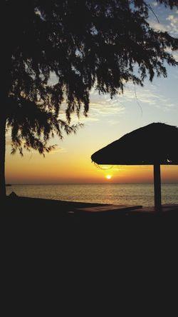 Sunset Silhouettes Sunset Enjoying Life Pulau Tioman