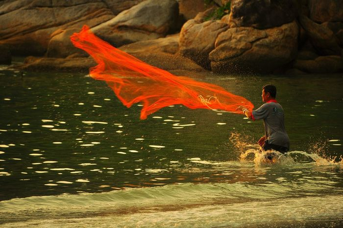 Water Animal Themes Fish Autumn Swimming Motion Close-up Animals In The Wild Nature Pets One Person Maple Leaf Day Outdoors People Goldfish Sea Life Adults Only One Man Only Adult