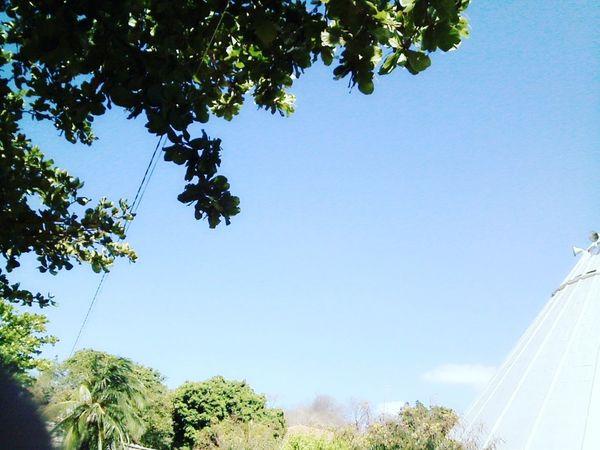 Céu CeuAzul Beautiful Beauty In Nature Nature Sky