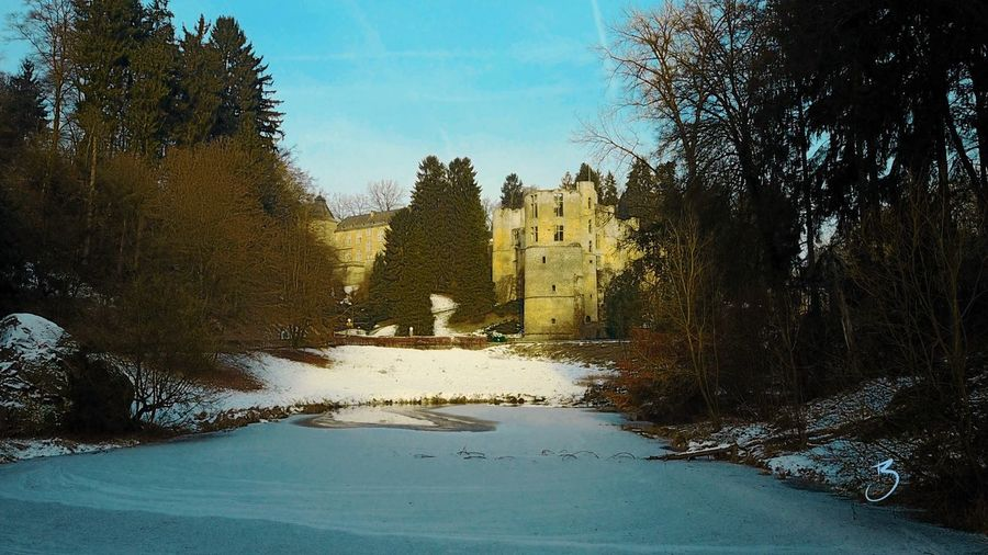 Tree Built Structure Architecture Building Exterior Winter Cold Temperature Snow No People Sky Day Outdoors Nature Place Of Worship Beaufort  Castle DJI Mavic Pro Luxembourg Mullerthal Trail Müllertal,Luxemburg Müllerthal Ruins