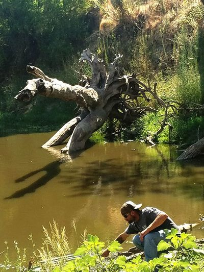Look What We Found California Drought A New Place To Fish Water Hole Kings Riverchecking things out No Crawdads 4 Dinner Tonight Found Live Cat Fish Hanging Out Morning Ride On Quad Tree Stump Broken Tree Wood Leaves And Shrubs Simplicity