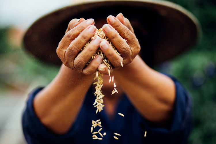 Close-Up Of Farmer Holding Wheat