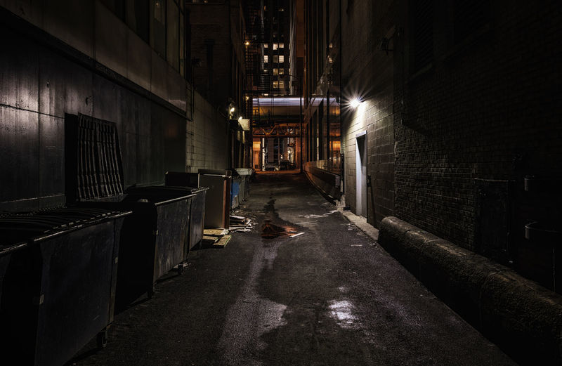 Chicago alley's at night Architecture Built Structure The Way Forward Direction No People Night Building Illuminated Wall - Building Feature City Chicago Alley Metro The Loop Train Motion Light Trail Brick Wall Moody Sky Carbage Containers Trash