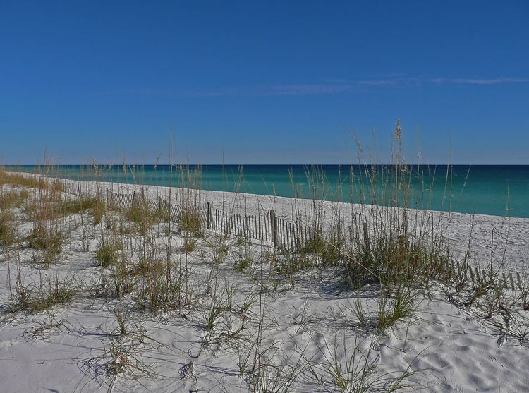 View of the white sand and beach in Navarre, Florida Green Gulf Coast Navarre USA Beach Beauty In Nature Clear Sky Day Emerald Florida Horizon Over Water Nature No People Outdoors Sand Scenics Sea Sky Tranquil Scene Water White