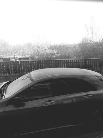 Car Mode Of Transport Tree Day Outdoors Land Vehicle Transportation Clear Sky No People Sky Road Nature Close-up Frosty Mornings Frozen Black & White Welcome To Black