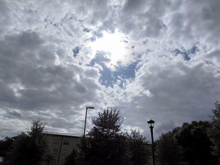 Hole Heaven Light Clouds Cloud Tree Cloud - Sky Sky Silhouette No People Outdoors Day Nature