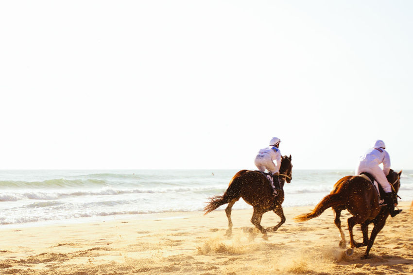 Adult Adventure Beach Competition Day Equine Full Length Horse Horse Racing Horseback Riding Jockey Men Nature One Animal Outdoors People Racing Sand Sea Sky Speed Sport Two Animals Working Animal Done That. Done That.