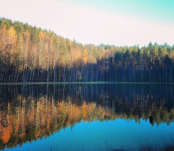 Reflection Naturebeauty Reflections In The Water Landscape_photography Finnish Nature Photographer Photography Nature Photography Beauty In Nature Water Nature Day Reflection