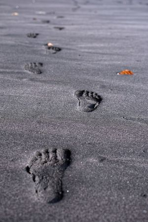 A long and winding walks XD ... Bandung Shooter Indonesian Shooter Absence Animal Animal Themes Backgrounds Beach Close-up Day FootPrint Full Frame High Angle View Land Nature No People Outdoors Paw Print Print Sand Selective Focus Track - Imprint Wet