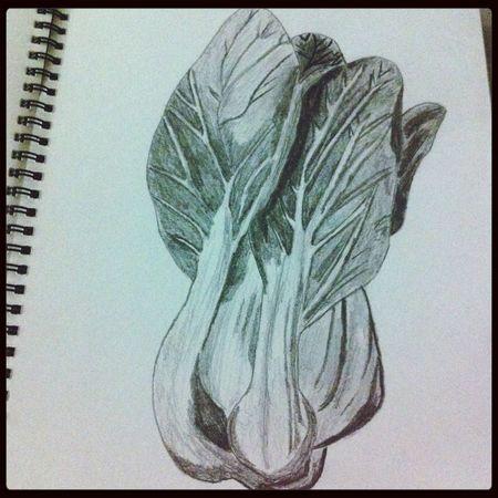 Art Sketch Drawing Vege