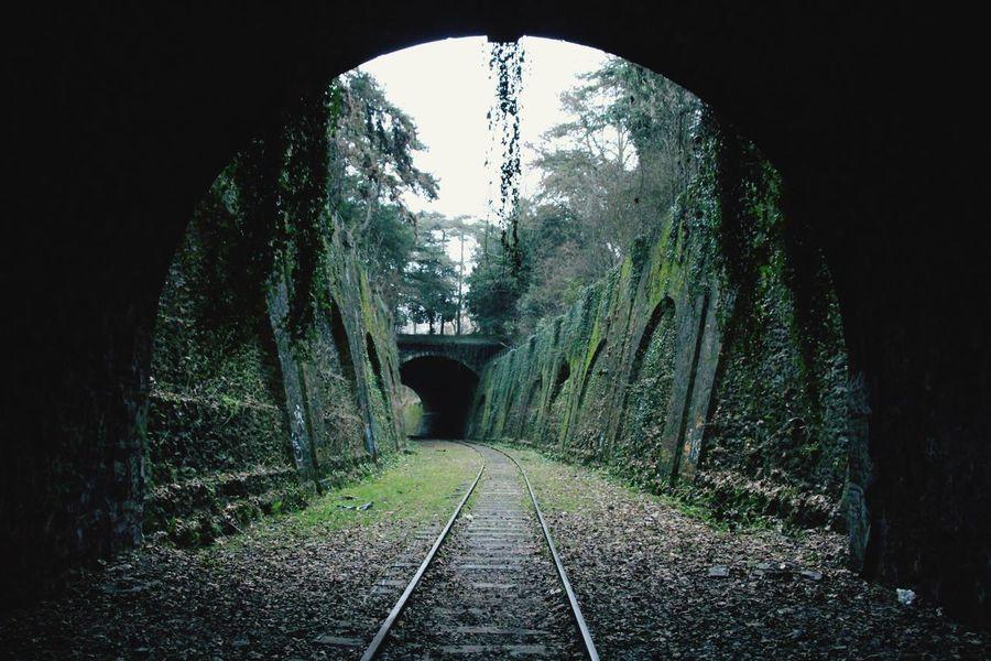 Rail Transportation Rail Rails Petiteceinture Paris #france 15eme Tunel Noir Vegetation Lieuabandonné Travel Voyage Désafecté Train Chemin De Fer Miles Away
