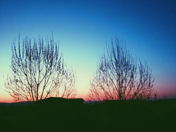 Check This Out I ❤️ Tirana Tirana I ❤️ Albania Albania Skyporn Sun Down Sunset Blue Sky Trees