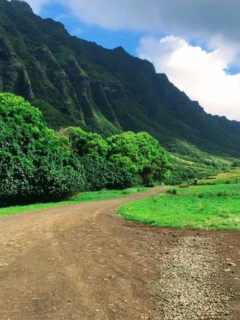 Country Road No People Cloud - Sky Outdoors Green Color Scenics Blue Grass Oahu Hawaii Tropical Landscape Nature Tropics Mountains The Week On EyeEm Island Of Oahu, Hawaii Been There. Lost In The Landscape Second Acts Perspectives On Nature Oahu / Hawaii An Eye For Travel The Great Outdoors - 2018 EyeEm Awards