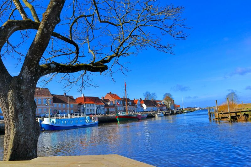 Water Nautical Vessel Tree Sky Mode Of Transportation Transportation Nature