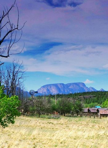 Agriculture Outdoors Nature Mountain Landscape Tree Sky Rural Scene Day No People Beauty In Nature New Mexico, USA Tranquil Scene Newmexicoskies Newmexicomountain Newmexicophotography Newmexicoskys NewMexicoTRUE New Mexico True