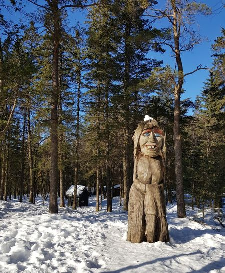 Statue amidst trees in forest during winter