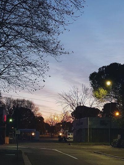 Sky Sunset No