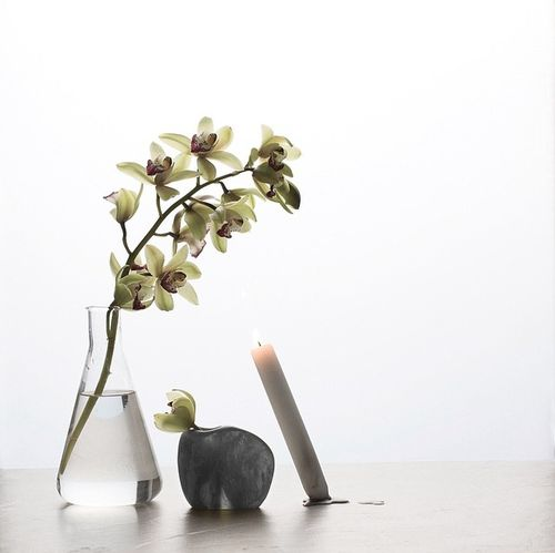 A little still life is so good for the soul. Still Life Taking Photos Orchids Candle Minimalism Minimalist