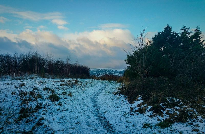 ... Morning Clouds ... Sky Cloud - Sky Outdoors Day Nature No People Tree Newtown Powys Tranquility Winter Snow Town Path Dawn Sunrise Wales Blue Park Hills Landscape Human Footprint Footpath Way Forward