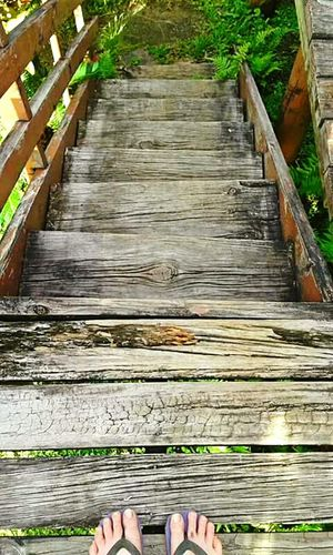 👣 Two Is Better Than One Shekelsphotography Fiji ❤🌴 Nature Photography Nature Photography Naturelovers Nature_collection Beauty In Nature Wood - Material Person Human Foot Wooden Personal Perspective The Way Forward Wood Paneling Outdoors Footbridge Boardwalk Footwear Walkway Plant Water High Angle View