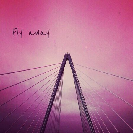 Flying to Seattle in a few min. Then on to Montana. :) #mci #flyaway #bridge #splittingwayswithearth Splittingwayswithearth Bridge Mci  Jj_forum_0451 Flyaway