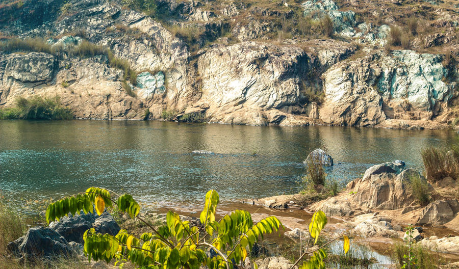 beautiful landscape river Water Rock Beauty In Nature Rock - Object Solid Plant Nature Scenics - Nature Day Sea Tranquility Rock Formation No People Growth Tranquil Scene Land Beach Non-urban Scene Outdoors