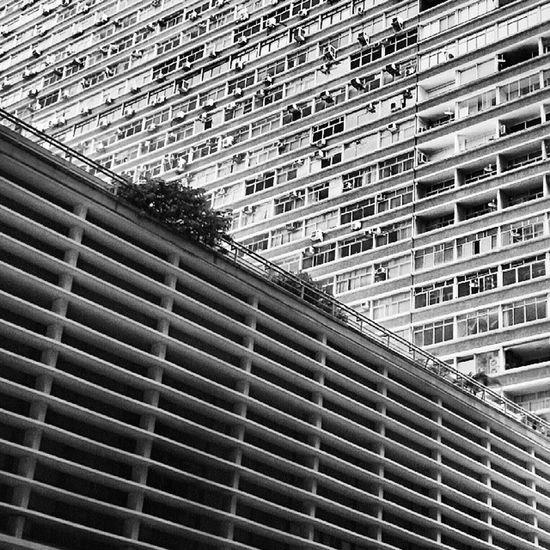 Architecture Conjuntonacional Livrariacultura Building paulistaavenue bw pb instasampa saopaulo sp brazil