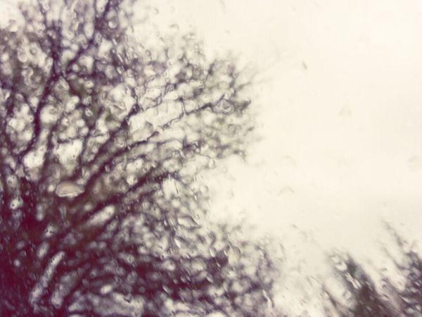 Walking Rain Rainy Day