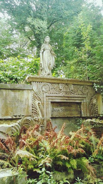 Lwow Lviv Lwow Cmentarz Cmentarz Łyczakowski Cementery Cmentarzlyczakowski