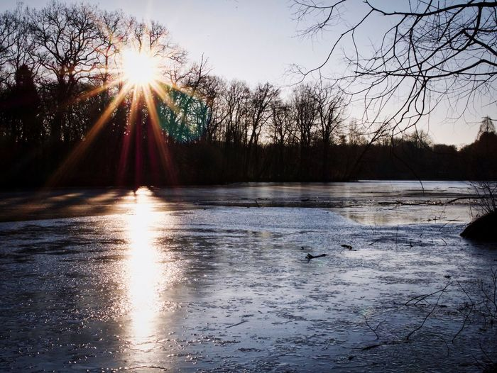 Frozen Sun Sunset Sunbeam Lens Flare Water Reflection Nature Beauty In Nature Sunlight Tree Scenics Tranquility Lake Winter Tranquil Scene Outdoors Cold Temperature