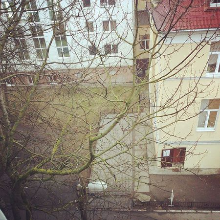 School KML Kaliningrad