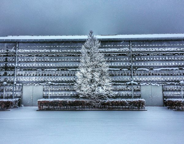 Snowy morning EyeEm Gallery EyeEm Nature Lover Snowy Day Nature Architecture No People Day Outdoors Built Structure Nature Snow Pattern Sky Winter Backgrounds Building Cold Temperature Wall - Building Feature Silver Colored