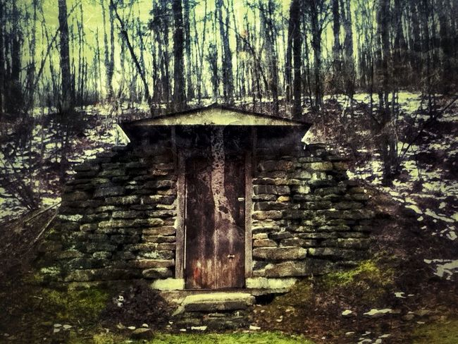 Into the woods, it's time to go. I hate to leave. I have to though. For The Love Of Trees ~ RusticWays Into The Woods Rurex